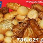 paya_luis_nuevo