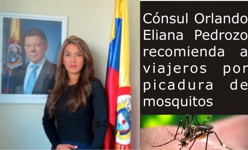 Cónsul Orlando, Eliana Pedrozo, recomendaciones a viajeros por picadura mosquitos