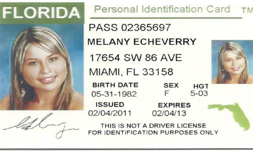 NECESITA UNA IDENTIFICACION DEL ESTADO DE LA FLORIDA? 305-642-96-76