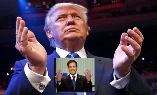 ¿Por qué el tamaño del miembro de Donald Trump se volvió noticia?