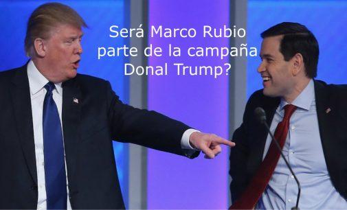 ¿Marco Rubio será parte de la campaña Donal Trump?