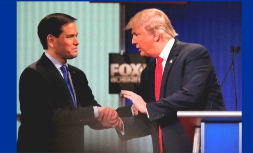 Marco Rubio apoyaría a Donald Trump video y texto