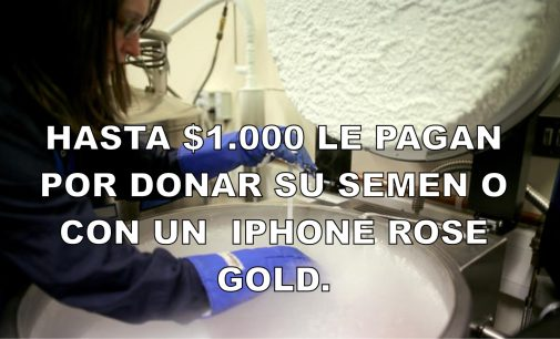 Hasta $1.000, o con un  iPhone Rose Gold. le pagan por donar semen