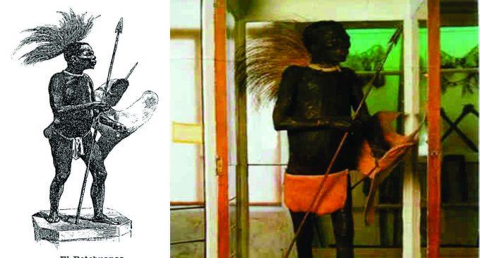 Historia del africano que fue disecado y expuesto como un animal en un museo de España