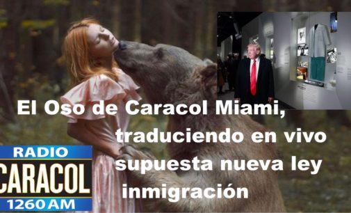 El Oso de Caracol Miami, traduciendo en vivo supuesta nueva ley inmigración