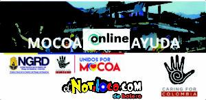 mocoa-nueva-york
