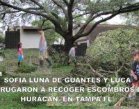 Sofia Luna de guantes y Luca, madrugaron a recoger escombros del Huracan  en Tampa Fl.