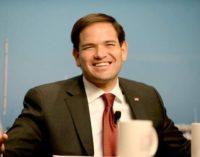 Senador Rubio pide más cooperación EEUU-Colombia para evitar retroceso regional en la frontera