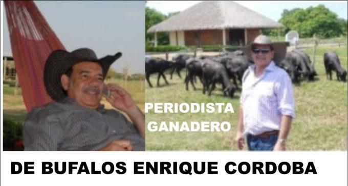 Enrique Córdoba en su ganadería de búfalos LA ROSA estará  generando material para producir yogur de búfala, las fotos aquí