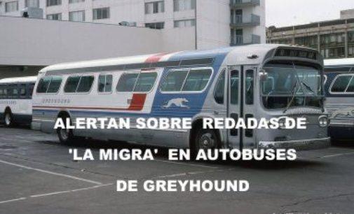 Alertan sobre redadas de 'La Migra' en autobuses de Greyhound