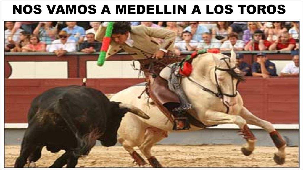 TOROS MEDELLIN